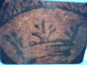 La Corona de la Santisima Virgen de Coromoto